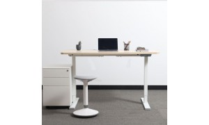 Electric Standing Desk, Dual Motors Stand-Sit Desk